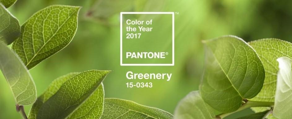 2017pantone-resize-2